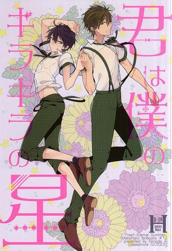 kimi wa boku no kirakira no hoshi cover